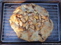 Apple Crostata with Maple Syrup, Vanilla & Ginger | © UrbanCottageLife.com